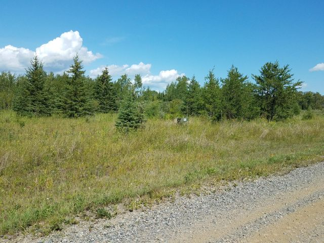 TBD Town Road 112 Road, Birchdale, MN 56629