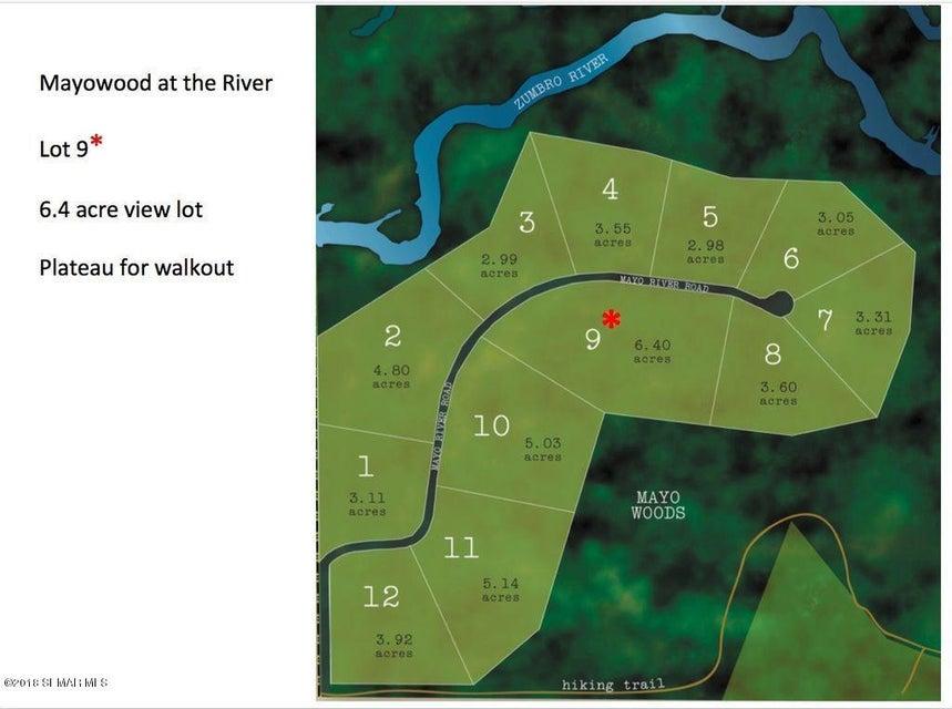 TBD SW Mayo River Lane SW Lane Rochester, MN 55902 - MLS #: 4086507