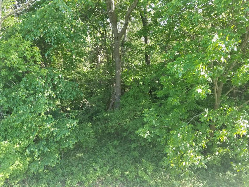 29170 Fallow Trail Trail Lanesboro, MN 55949 - MLS #: 4088578