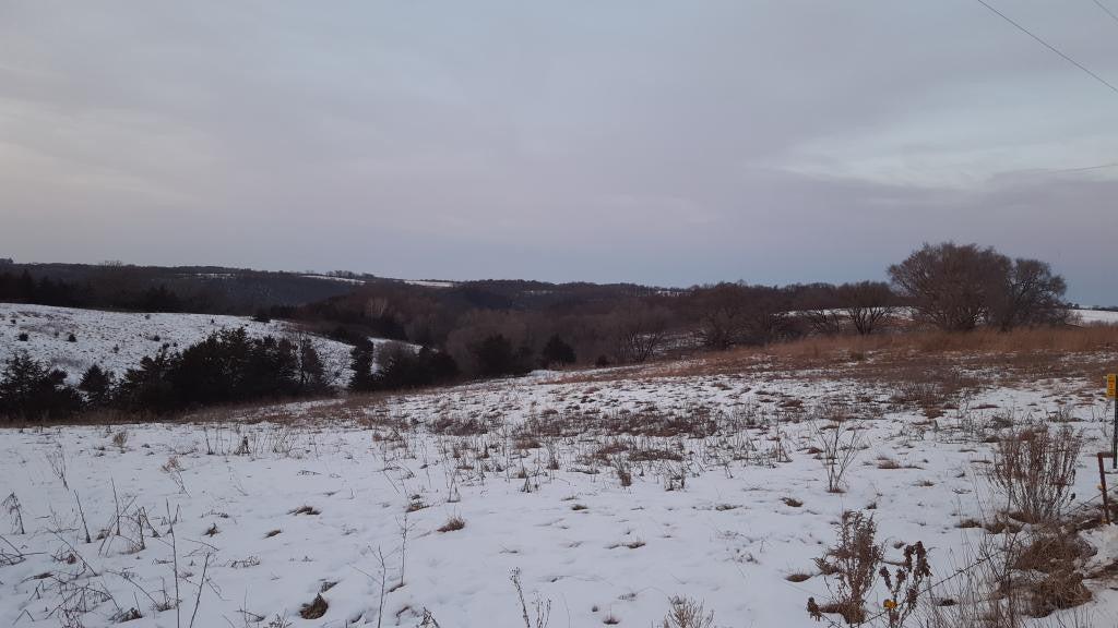 L Blk Aster Road, Mabel, MN 55954