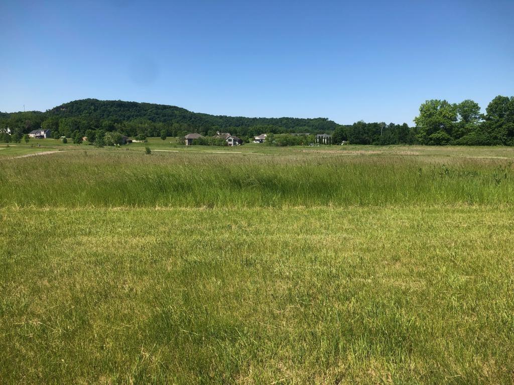 901 Hidden Meadow Lane, Lake City, MN 55041
