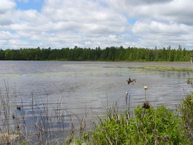 Spies Lake
