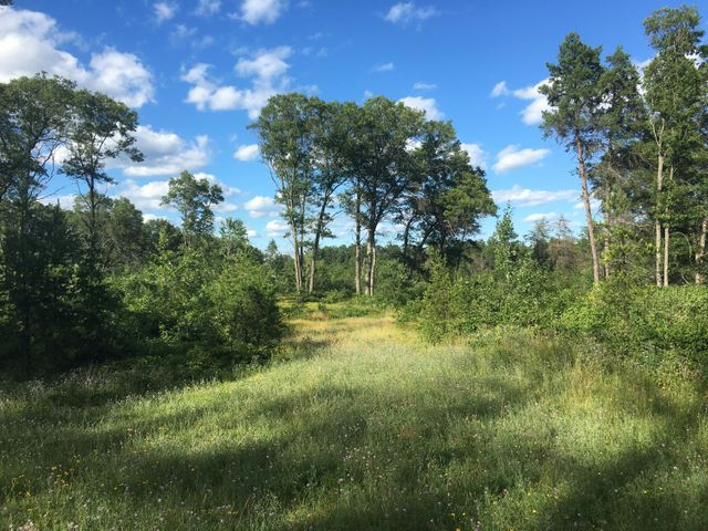 Lot #4 OPEN GATE Trail, Crivitz, WI 54114