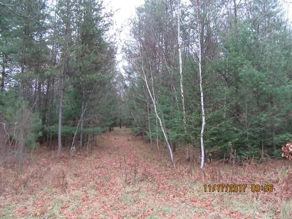 Cty Rd A/C, Athelstane, WI 54104