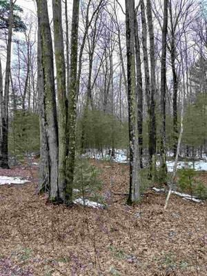 Maple Hill Lane, Marinette, WI 54143