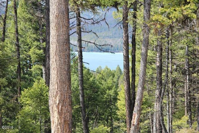 Nhn Ashley Lake Road, Kalispell, MT 59901
