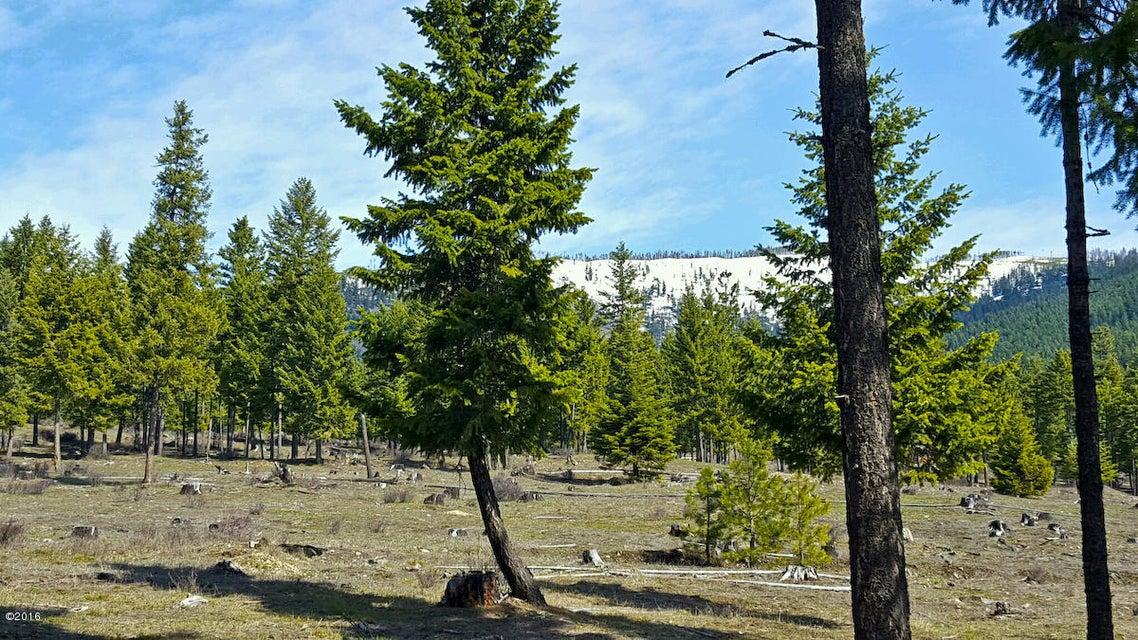 Nhn Genesis Road, Trout Creek, MT 59874