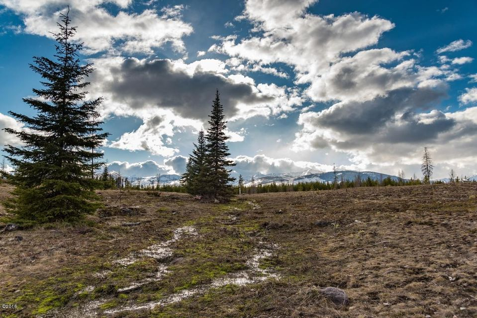 Lot 4 Cougar Run Drive, Condon, MT 59826