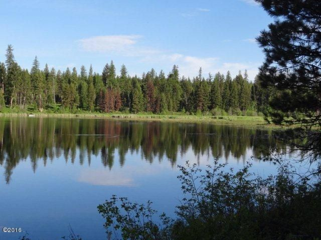 8523 N Placid Lake Road, Seeley Lake, MT 59868