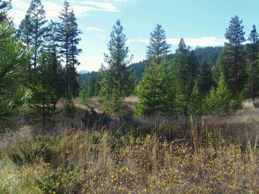 Take a look at this well planned out and beautiful subdivision in Northwest Montana not far from the town of Eureka and close to Lake Koocanusa. Lots 1-2  in  Cyhawk Estates  are very generously sized and are located only 4 miles from Eureka and Lake Koocanusa. lots of acres with views of the mountains. Septic approval. Purchaser to install wells. The property is parked out and ready for new homes!