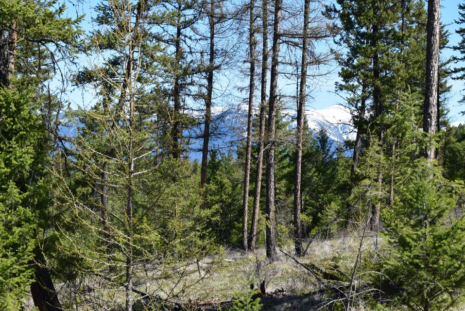 Lot 9 of Cyhawk Estates located only 4 miles from Eureka and Lake Koocanusa. Power is close to the property! 8 acres with views of the mountains! Septic approval. Purchaser to install well. The property is parked out and ready for your new home!