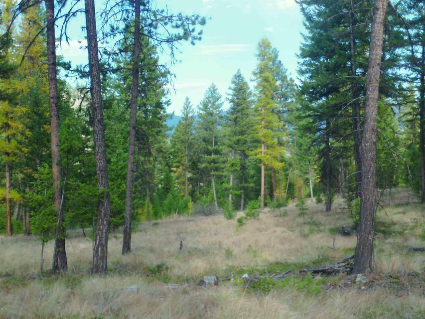 Lot 6 of Cyhawk Estates is a beautifully wooded lot BORDERING FOREST SERVICE LAND! located approx 4 miles from Eureka and Lake Koocanusa. Almost 9 acres with views of the mountains. Power to the property. Septic approval.  The property is parked out and ready for your new home!