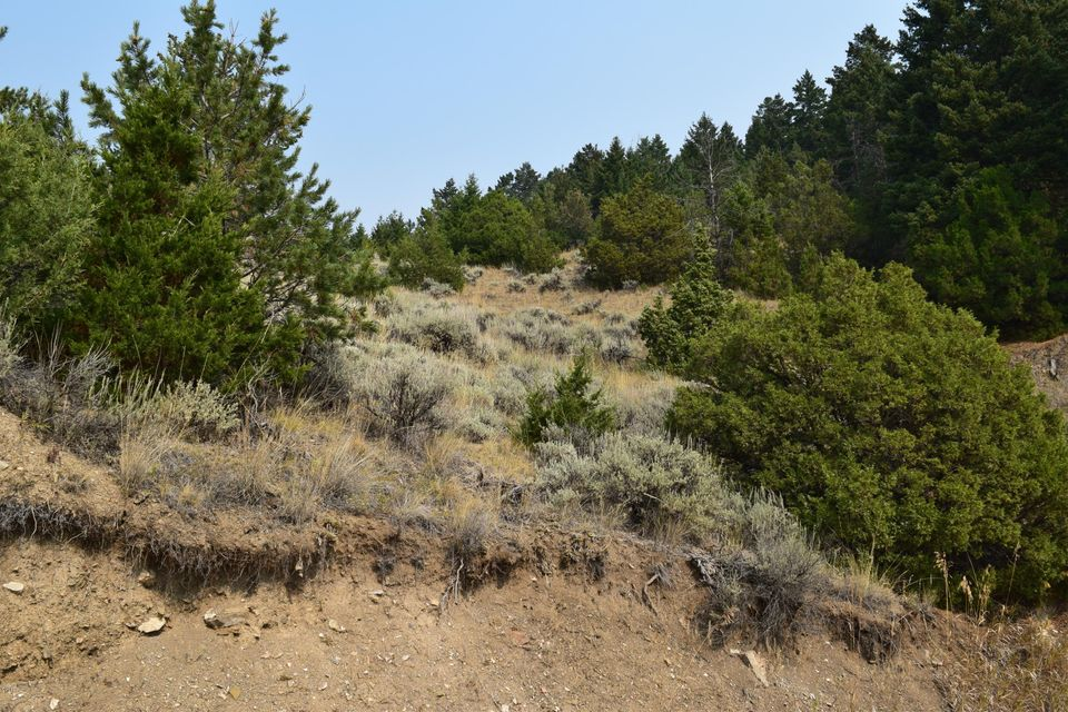 Enjoy Montana from this beautiful 20 acre parcel with top of the world views, on a clear day you have mountain views and a view of the Missouri river! Build a hunting cabin and enjoy deer and elk hunting, or build a home for day to day living, lot's of sunshine for off the grid living and multiple building sites with lots of trees on this property!