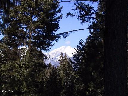 292 Bobcat Lane, Seeley Lake, MT 59868