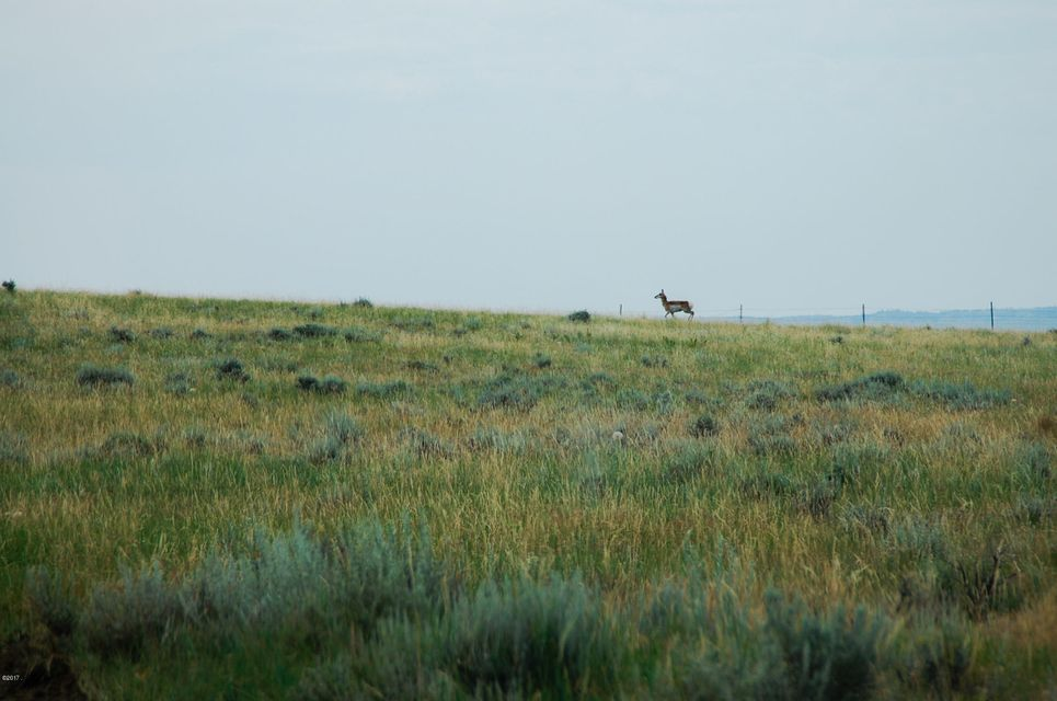 Tbd Musselshell Trail, Roy, MT 59471