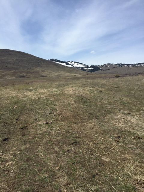 Nhn Edwards Gulch Road, Drummond, MT 59832