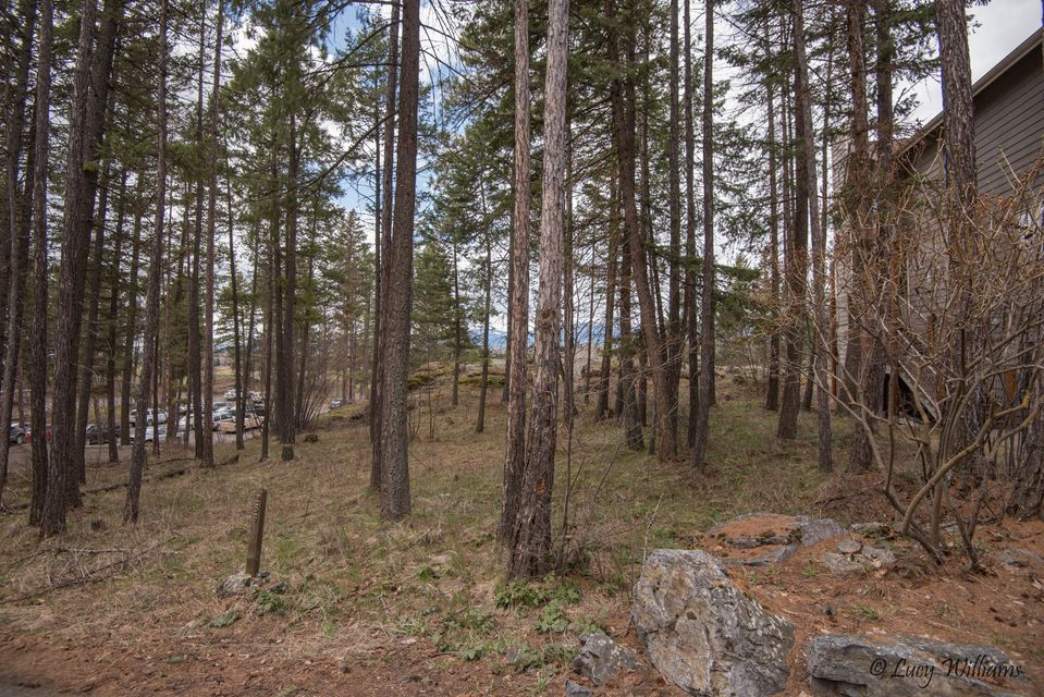 283 Eagle Bend Drive, Bigfork, MT 59911