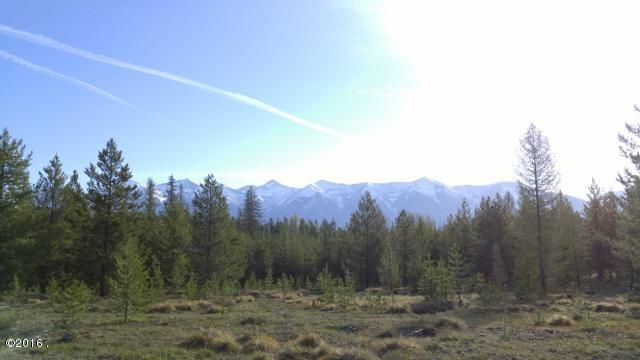 Lot 4 Elk Creek Preserve-Kraft Creek Road, Condon, MT 59826