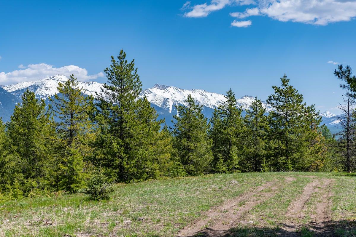 Stoner Lake & Elk Creek Road, Condon, MT 59826