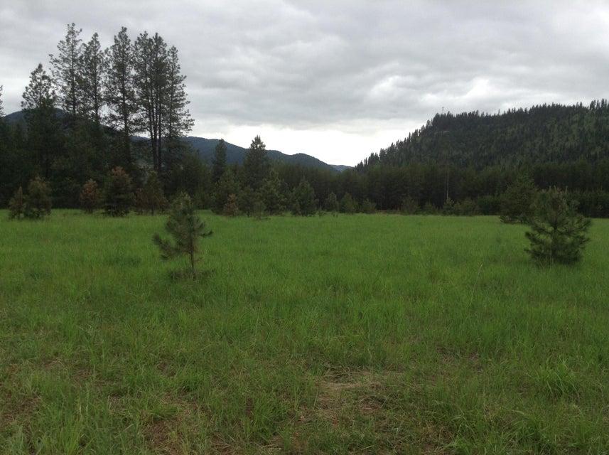 Mountain Home Lane, De Borgia, MT 59830
