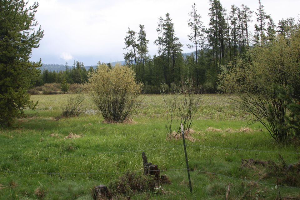 585 Badger Hollow Trail, Marion, MT 59925