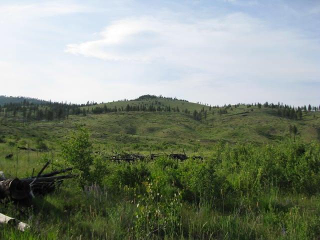 Nhn Mill Creek Road, Hot Springs, MT 59845