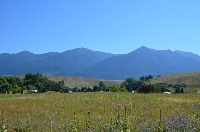 Nhn Cattle Run, Eureka, MT 59917