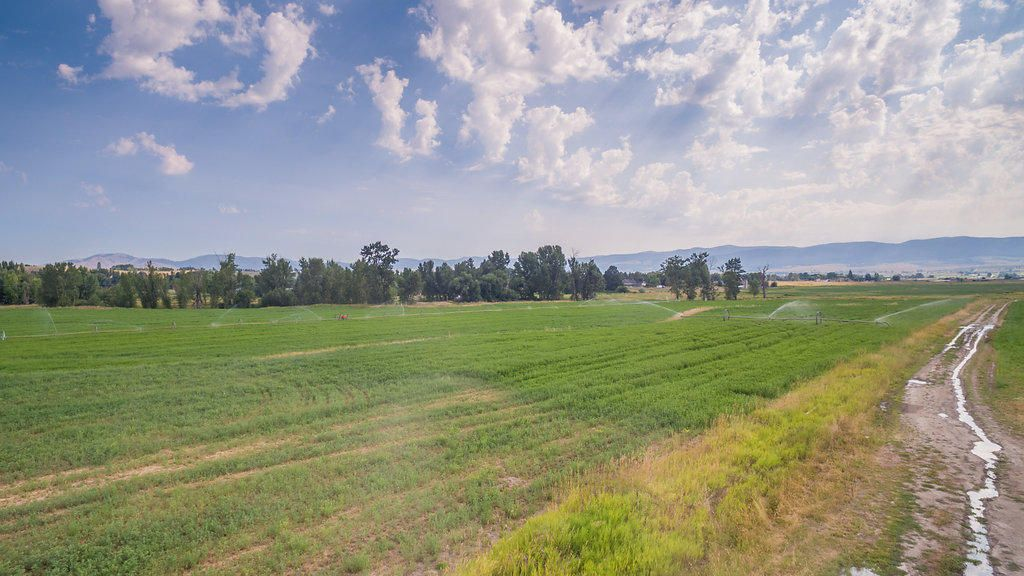 Nhn Grizzly Way, Stevensville, MT 59870