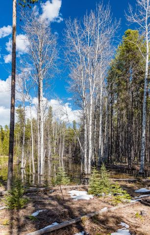 Lot 2 Cougar Run-Kraft Creek Road, Condon, MT 59826