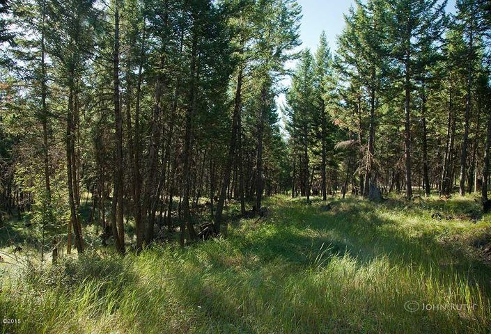 Nhn-5 Acre Gray Wolf Trail, Rexford, MT 59930