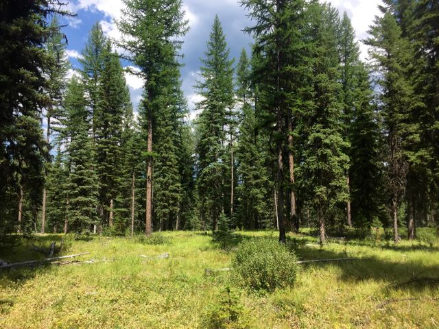 Nhn(173ac) North Fork Road, Polebridge, MT 59928