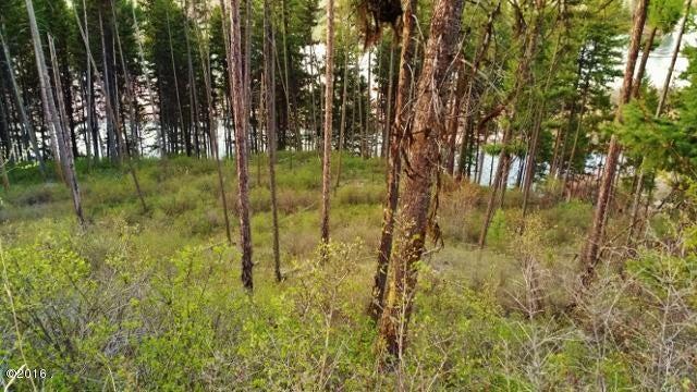 Clark Fork Riverfront Land