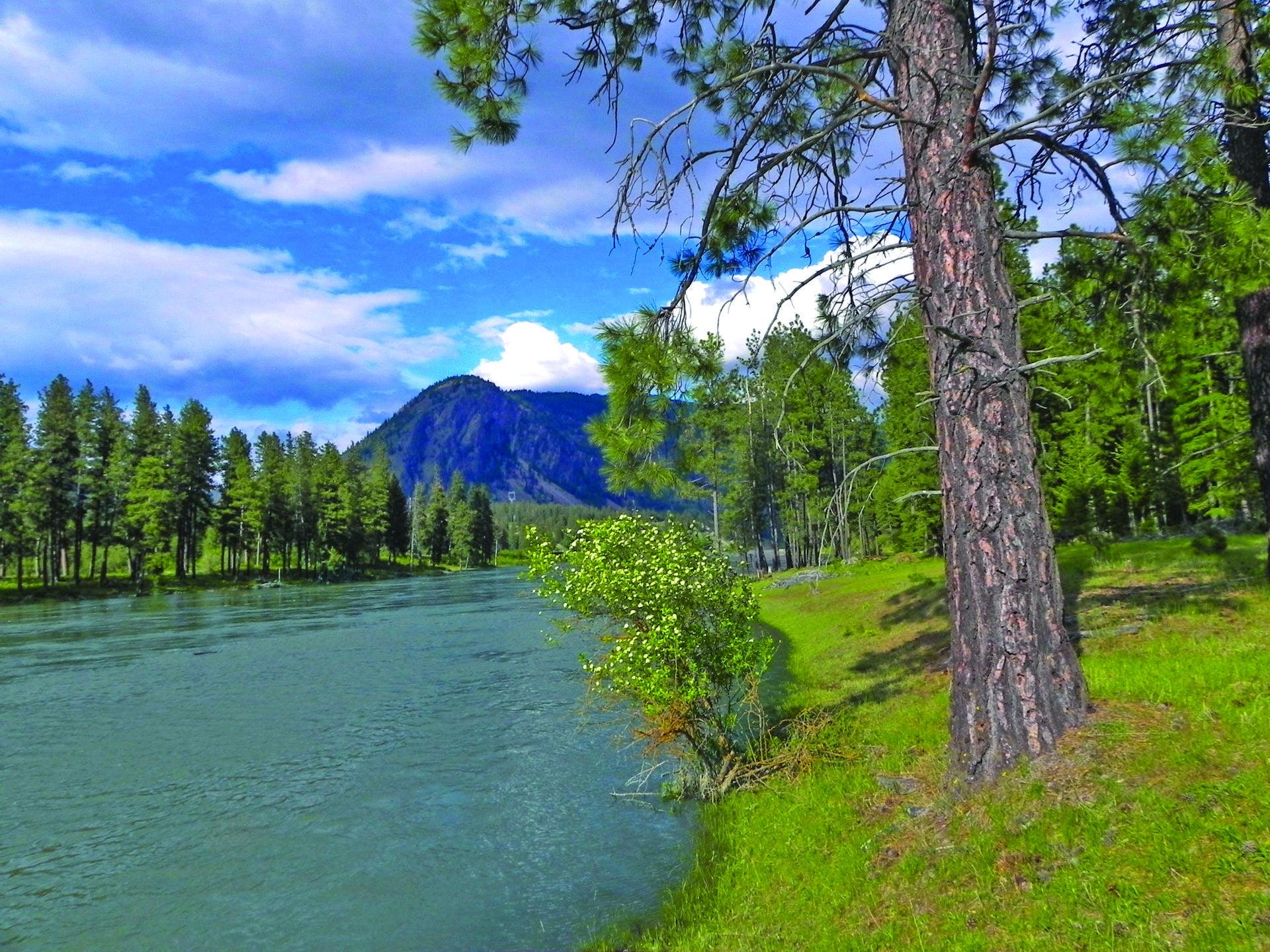 589 Cherry Creek Road, Thompson Falls, MT 59873