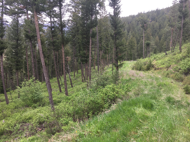 Nhn Miller Creek, Missoula, MT 59803