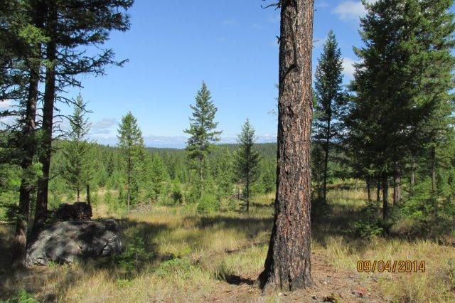 Lot 4 Annerly Ferry Road, Rexford, MT 59930