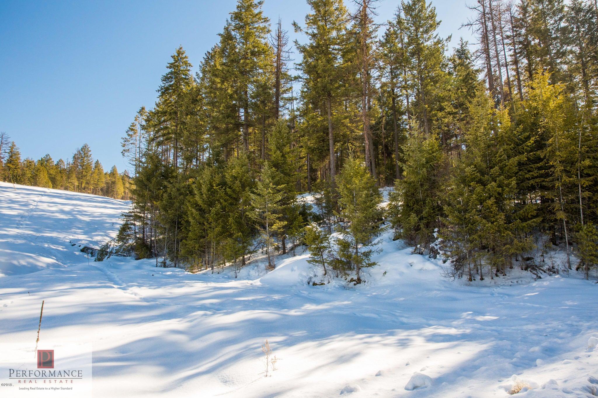 100 Tamarack Woods Drive, Lakeside, MT 59922