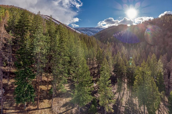 14165 Mormon Creek Road, Lolo, MT 59847