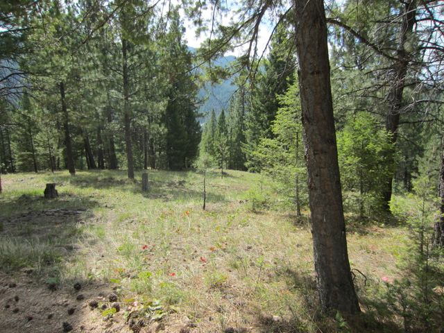 Nhn Findley Trail, Conner, MT 59827