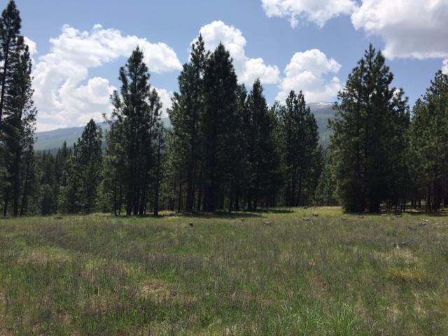 1155 Megan Trail, Victor, MT 59875
