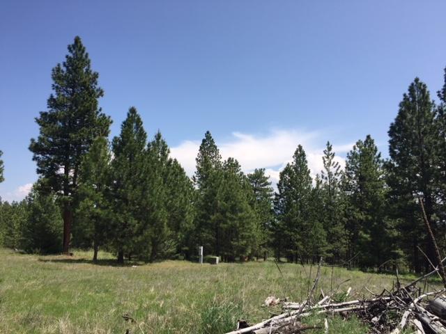 1186 Megan Trail, Victor, MT 59875