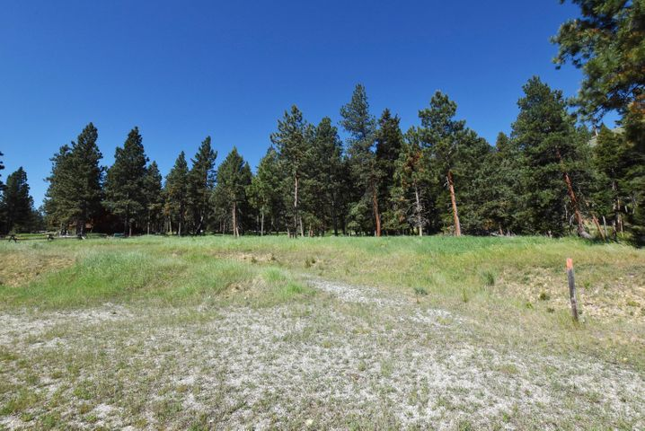 Tbd Sacajawea Way, Sula, MT 59871