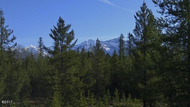 Nhn Elk Creek Road, Condon, MT 59826