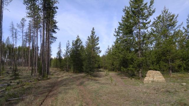 Lot 3 Elk Creek Preserve, Condon, MT 59826