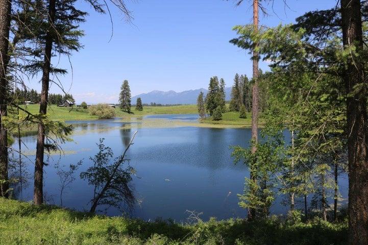 73 Bear Paw Loop, Bigfork, MT 59911