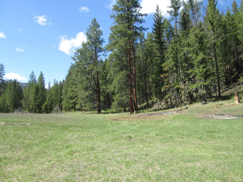 Nkn Trapper Creek Road, Darby, MT 59829