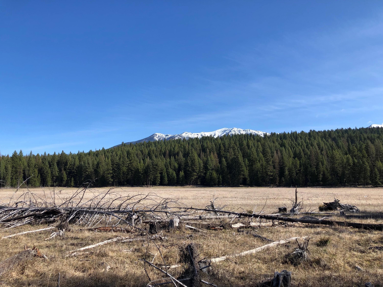 Nhn A Pomeroy Trail, Eureka, MT 59917