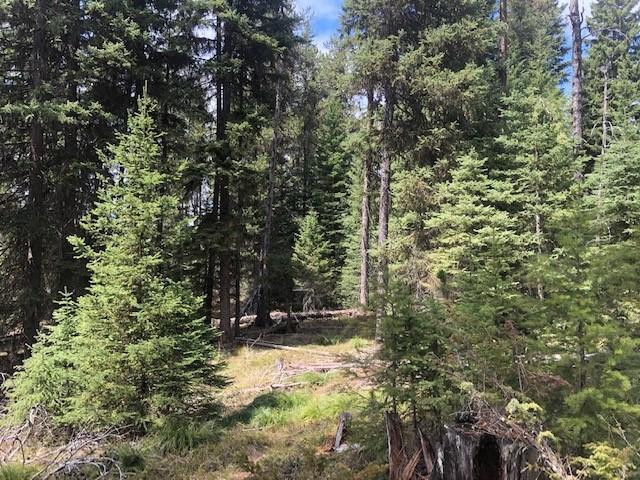 Nhn Highway 83, Seeley Lake, MT 59868