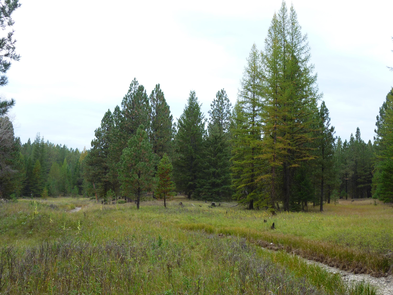 Tract 5a Pomeroy Trail, Eureka, MT 59917