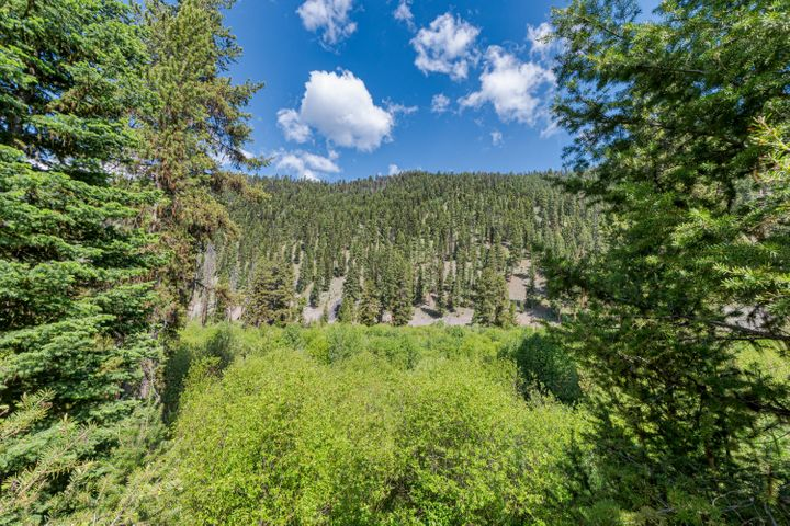 815 Hughes Creek Road, Darby, MT 59829