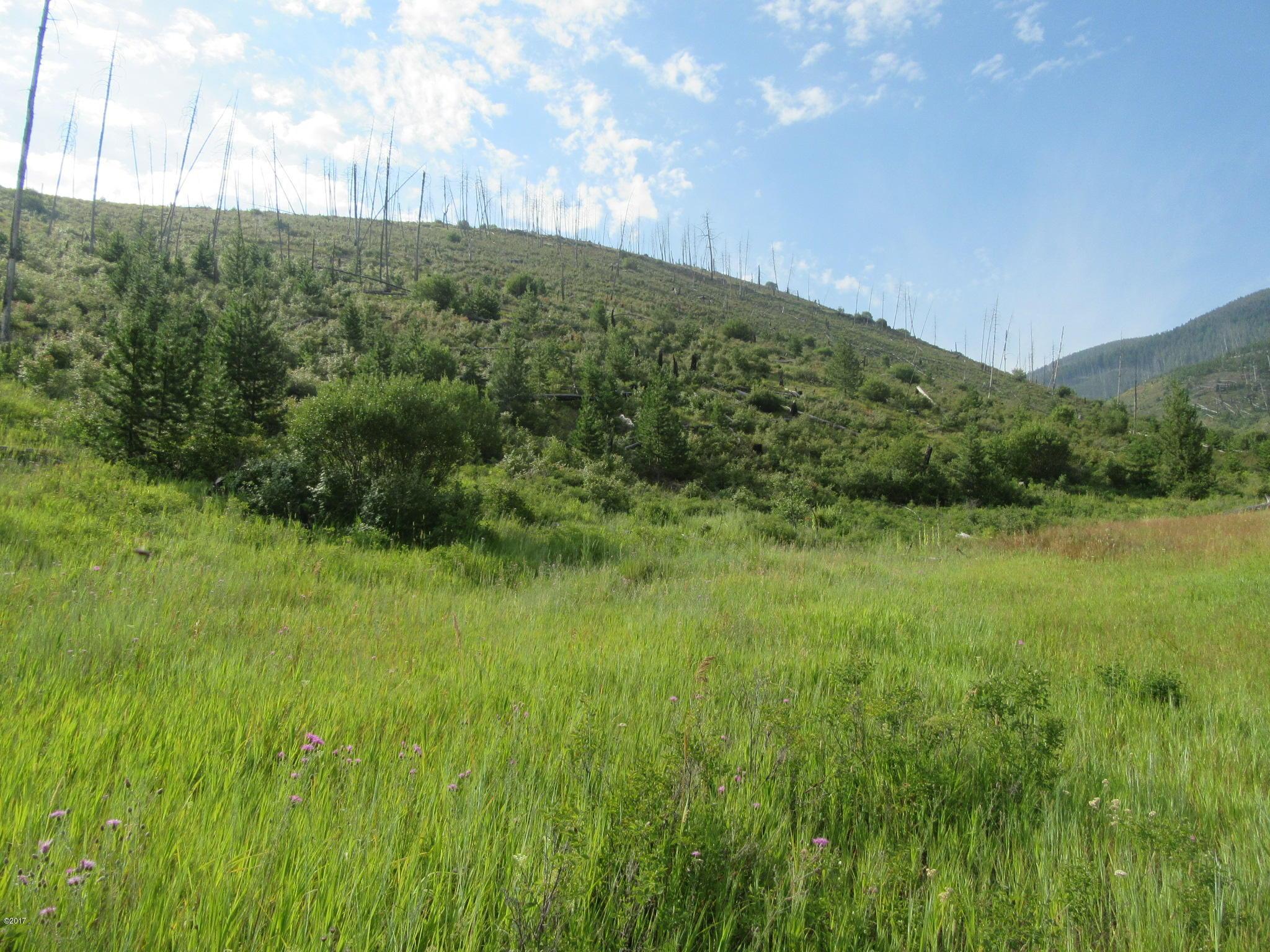 Nn North Spade Creek Trail, Conner, MT 59827